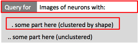 Query menu for single neurons by location: AL