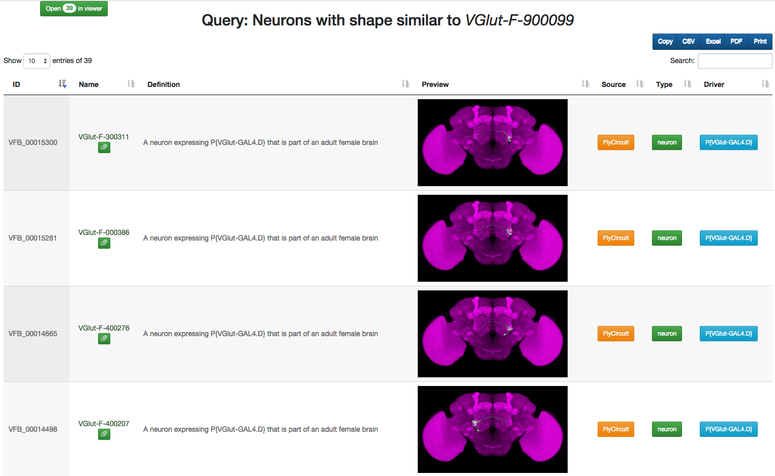 All neurons in a cluster with annotations