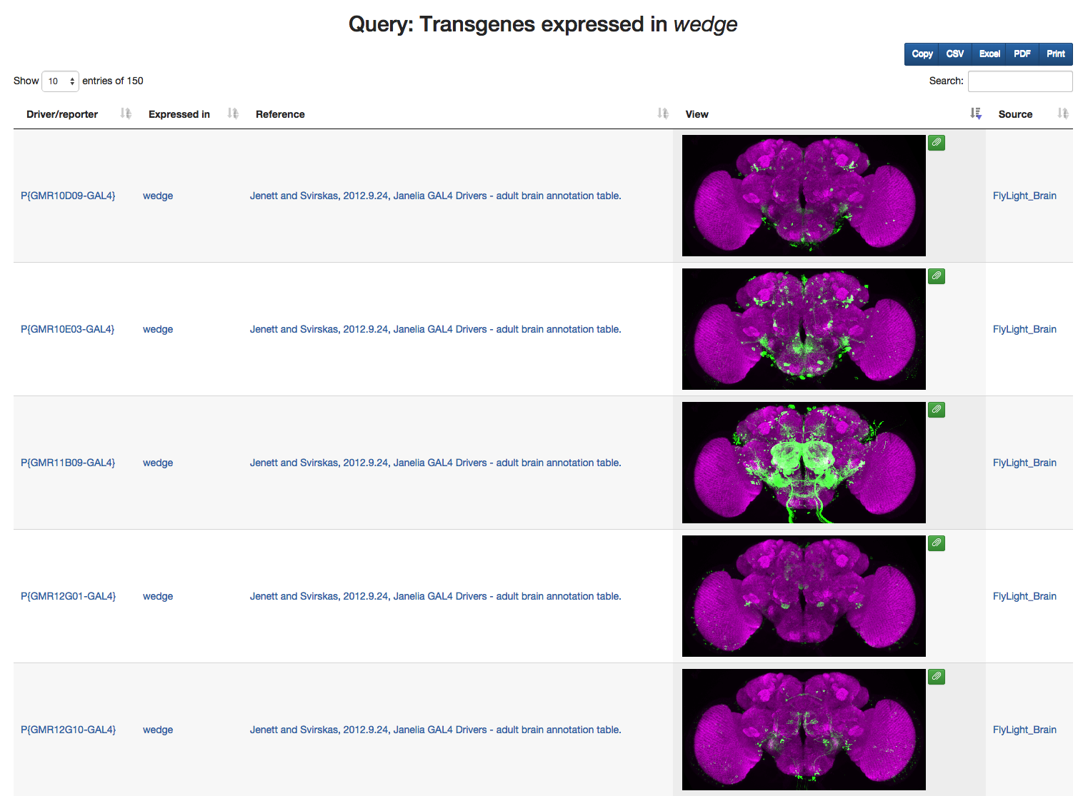 Query results for transgenes